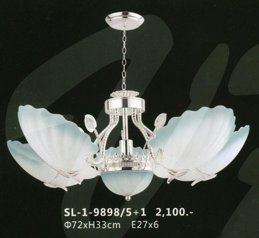 sl-1-9898-51
