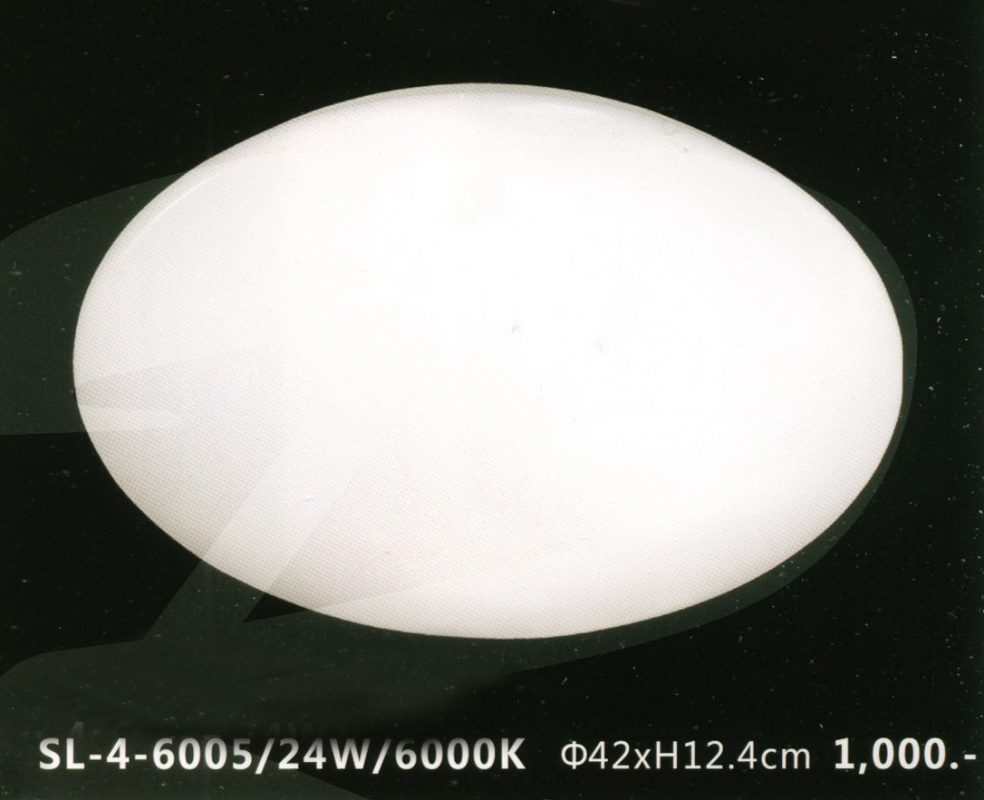 sl-4-6005-24w-6000k