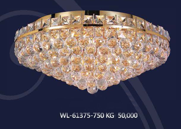 wl-61375-750kg