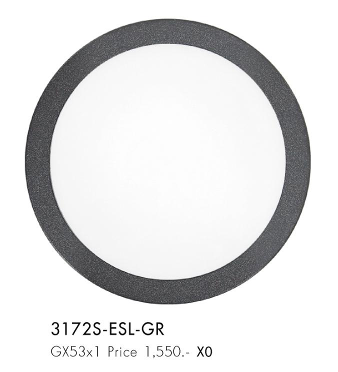 3172s-esl-gr