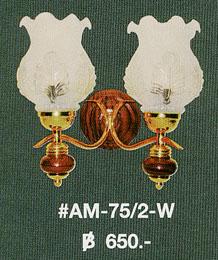 am-75-2-w