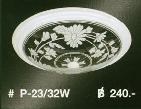 p-23-32w
