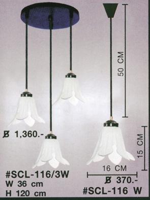 scl-116-3w