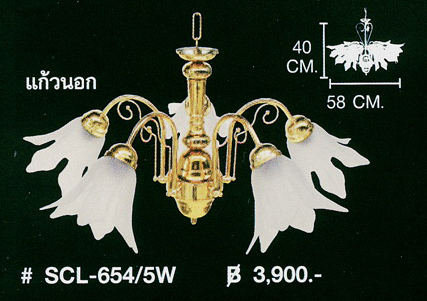 scl-654-5w