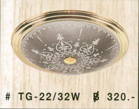 tg-22-32w