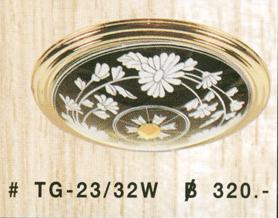 tg-23-32w