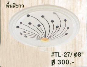 tl-27-8