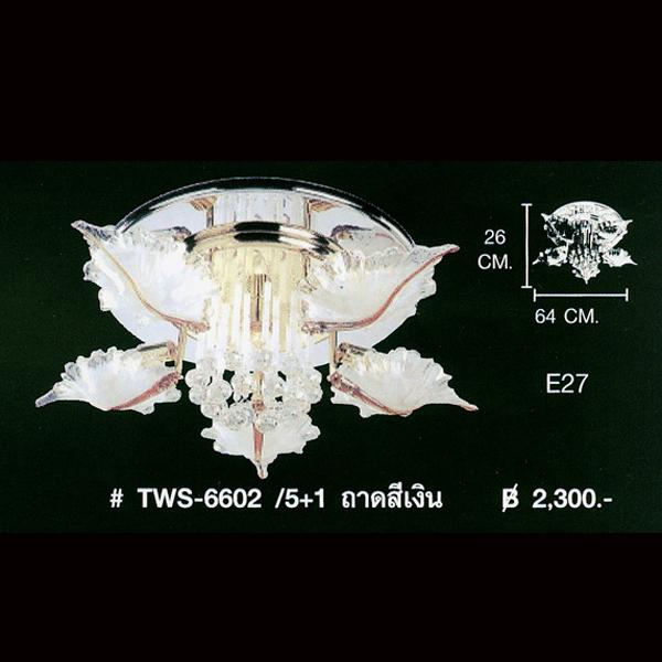 TWS-6602-51