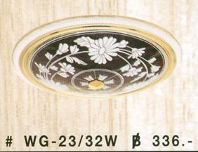 wg-23-32w