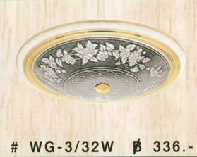 wg-3-32w