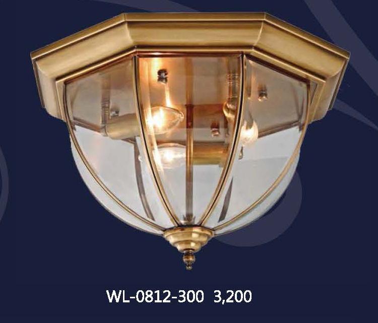 wl-0812-300