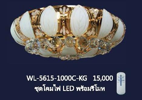 wl-5615-1000c-kg