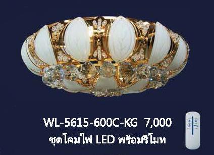wl-5615-600c-kg