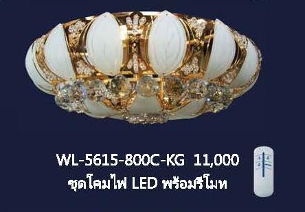 wl-5615-800c-kg