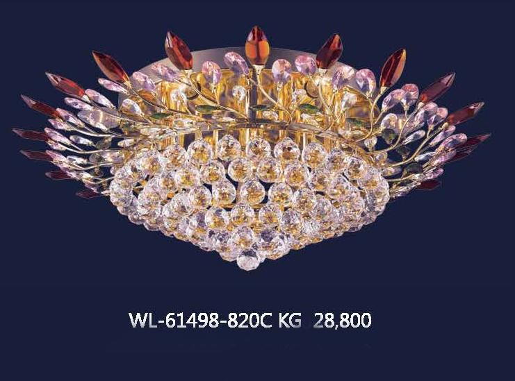 wl-61498-820c-kg