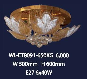 wl-et8091-650kg