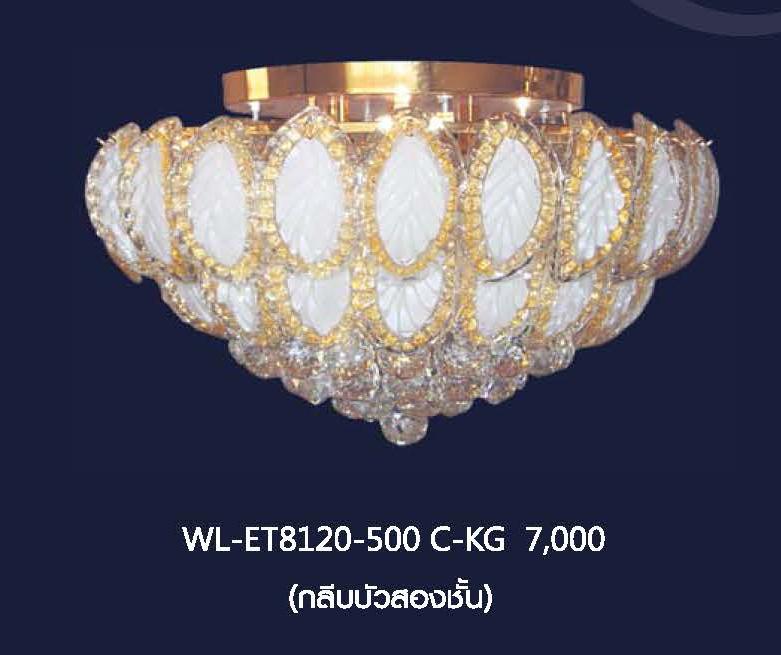 wl-et8120-500-c-kg