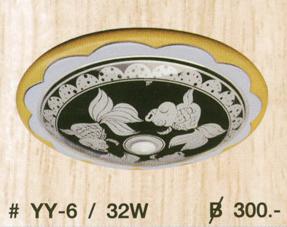 yy-6-32w